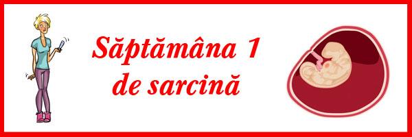 saptamana-1-de-sarcina
