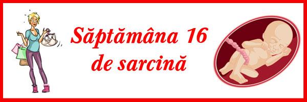 saptamana-16-de-sarcina