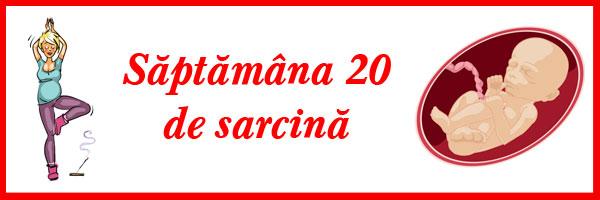 saptamana-20-de-sarcina