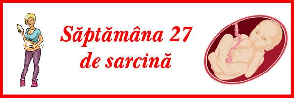 saptamana-27-de-sarcina