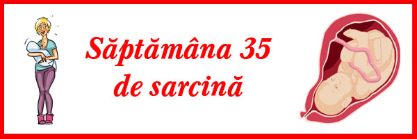 saptamana-35-de-sarcina