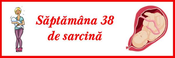 saptamana-38-de-sarcina
