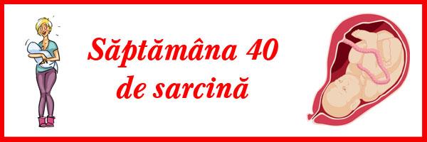 saptamana-40-de-sarcina