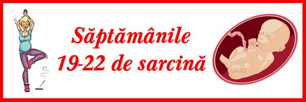 saptamanile-19-22-de-sarcina