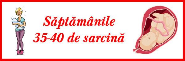 saptamanile-35-40-de-sarcina
