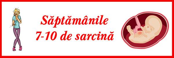 saptamanile-7-10-de-sarcina