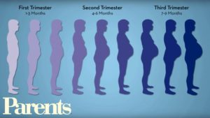 Despre saptamanile de sarcina