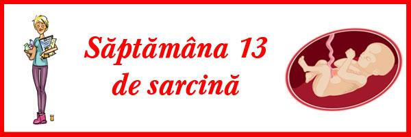 saptamana-13-de-sarcina
