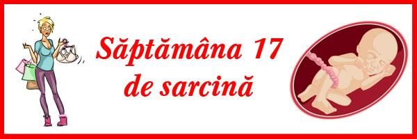 saptamana-17-de-sarcina