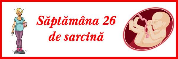 saptamana-26-de-sarcina