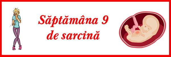 saptamana-9-de-sarcina