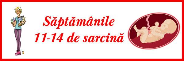 saptamanile-11-14-de-sarcina