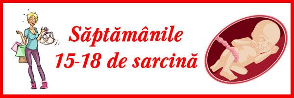 saptamanile-15-18-de-sarcina
