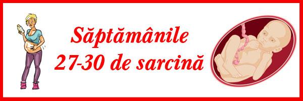 saptamanile-27-30-de-sarcina